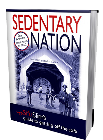 sedentarynation-ebook